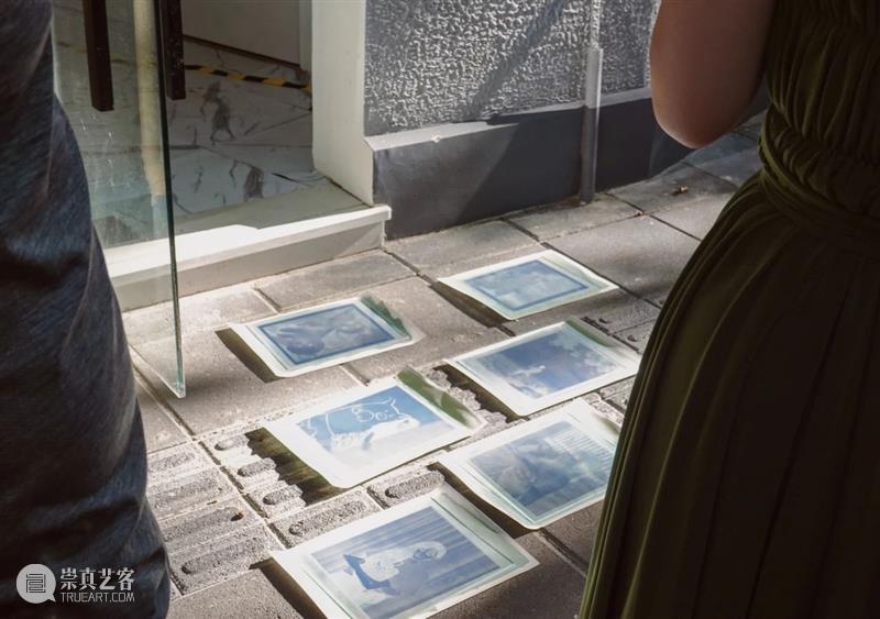 SCôP YPP回顾   古典摄影工艺蓝晒工坊 工艺 工坊 YPP 青年 家们 作品 印相 阳光 化学反应 世界 崇真艺客