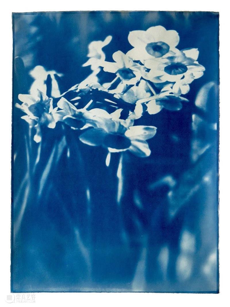 推入近景 | 马秋莎:蓝晒就是镜像下的一层滤镜 马秋莎 近景 蓝晒 镜像 滤镜 系列 个展 现场 英国 图片 崇真艺客