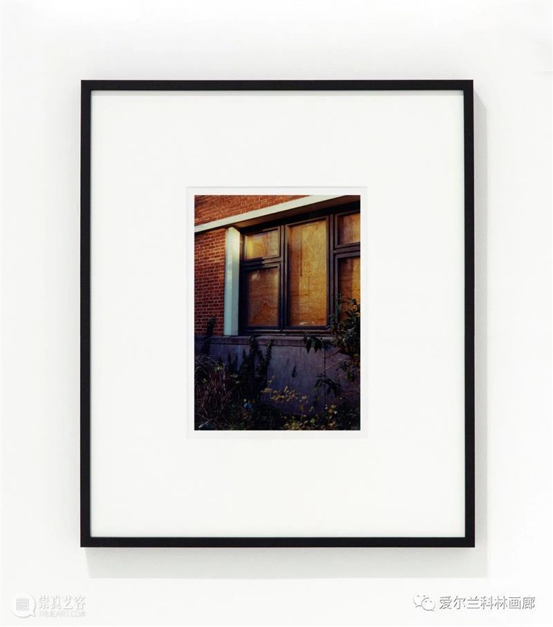 科林画廊:塞缪尔·劳伦斯·坎南 | 伊丽莎白·玛吉 双个展 塞缪尔 劳伦斯·坎南 伊丽莎白·玛吉 科林 画廊 个展 沙农 Shannon 档案 相纸 崇真艺客