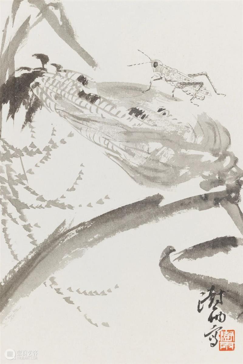 花鸟画讲坛No.9|阴澍雨:写生——从观念到实践 花鸟画 讲坛 观念 阴澍雨 No.9 观物 中国 系列 学术 浙江美术馆 崇真艺客
