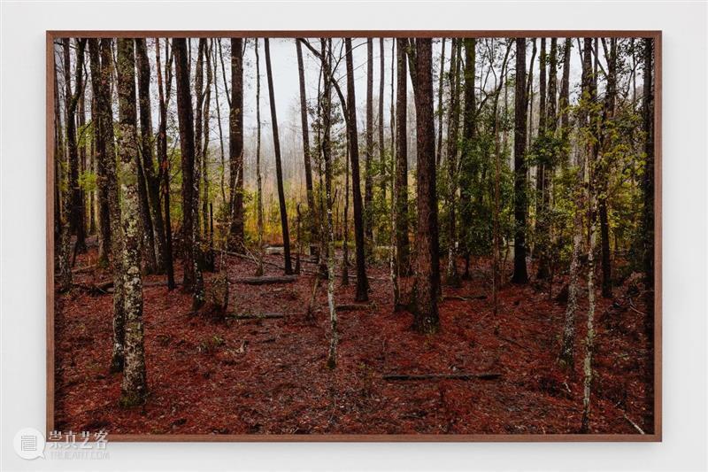 立木画廊艺术家特殊项目 + 线上展厅 | 与 Catherine Opie 一起出发 Opie 画廊 艺术家 项目 线上 展厅 于嘉芙莲·奥比 家人 全美 公路 崇真艺客