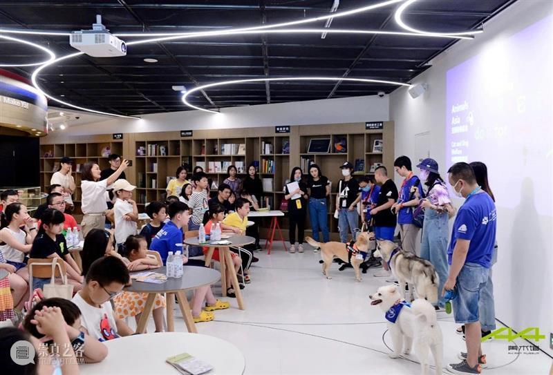 "iSTART|听孩子们说,""爱它""! 孩子们 麓湖 A4美术馆 亚洲 动物 基金 iSTART 儿童 艺术节 学校 崇真艺客"
