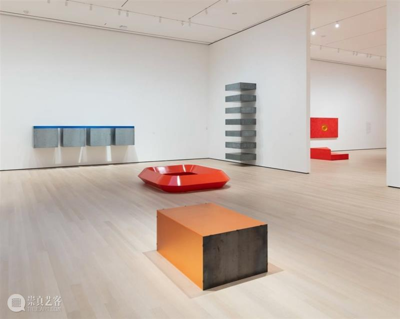 MoMA首席策展人安·特姆金谈唐纳德·贾德的非凡艺术实践 MoMA 唐纳德 贾德 首席 特姆金 艺术 策展人 Judd The Art纽约现代艺术博物馆 崇真艺客