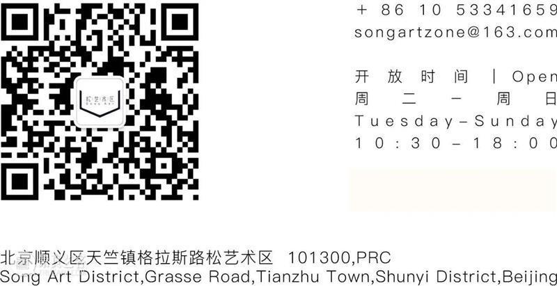 展览预告   有一种形式 A Kind of Form 形式 Form 郭鑫 Curator Xin 公众 开放日 地址 艺术 北京市 崇真艺客