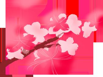 最好的爱情,在至情至美的《牡丹亭》! 牡丹亭 爱情 至情 汤显祖 世界 文化 瑰宝 杜丽娘 柳梦梅 生死 崇真艺客
