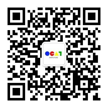 [ OCAT|特别项目 ] 共同工作 项目 OCAT 艺术 深圳 内部 外部 实践者 工作 成果 观众 崇真艺客