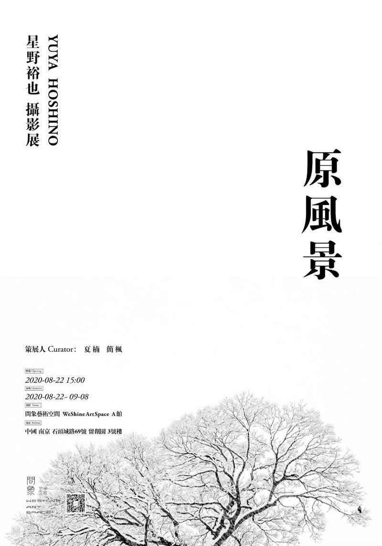 问象艺术家简介    Art Shenzhen 2020 : 朱智伟(ZHU Zhiwei) 艺术家 朱智伟 Zhiwei 简介 Art Shenzhen 艺术 深圳 博览会 ART 崇真艺客