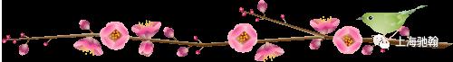 【驰翰•2020春拍二】宫廷剧追的那么刻苦,你可知道诰命是什么呢? 驰翰 诰命 宫廷剧 客服 二维码 资讯 重点 重磅 寸金 古籍 崇真艺客