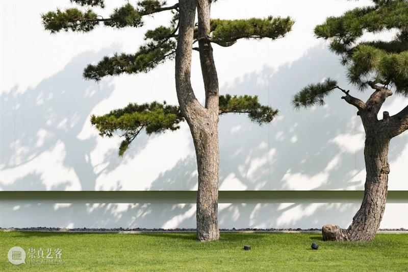 欢度国庆,中秋团圆 欢度 十一 假期 需要 松美术馆 美术馆 时间 星期一 瑜伽 手作 崇真艺客