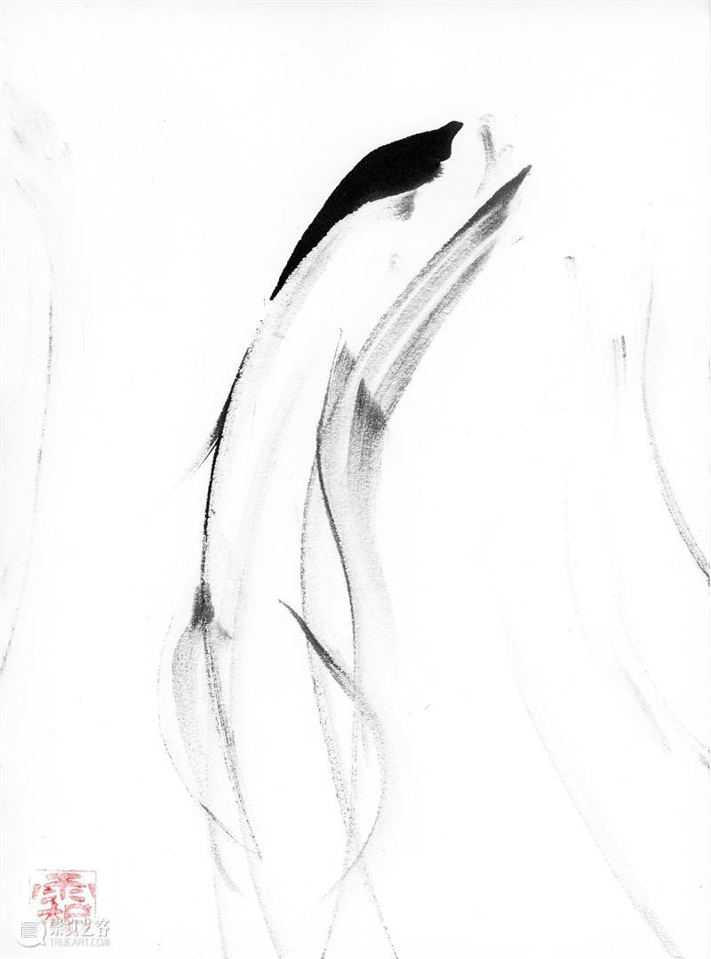 kurimanzutto展讯 | Siembra 8 - 帕布罗·索勒·弗罗斯特:绘画室  kurimanzutto画廊 Siembra 帕布罗 索勒 弗罗斯特 画室 kuri 展讯 年份 系列 计划 崇真艺客