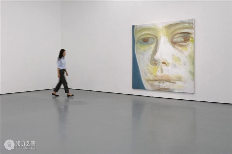 姜琤自述|身体的回归 姜琤 身体 奥菲莉娅 布面 油画 拉斐尔前派 约翰 埃弗里特 米莱斯 Millais 崇真艺客