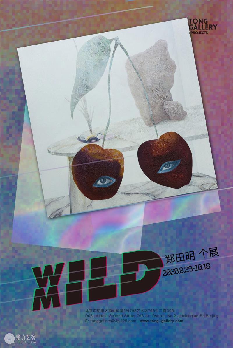 博览会|Tong Gallery+Projects参加2020南京扬子艺术博览会|展位A27 南京 扬子 艺术 博览会 展位 Gallery+Projects Gallery+Projects荣幸 蔡东东 黄娟 贾力立 崇真艺客