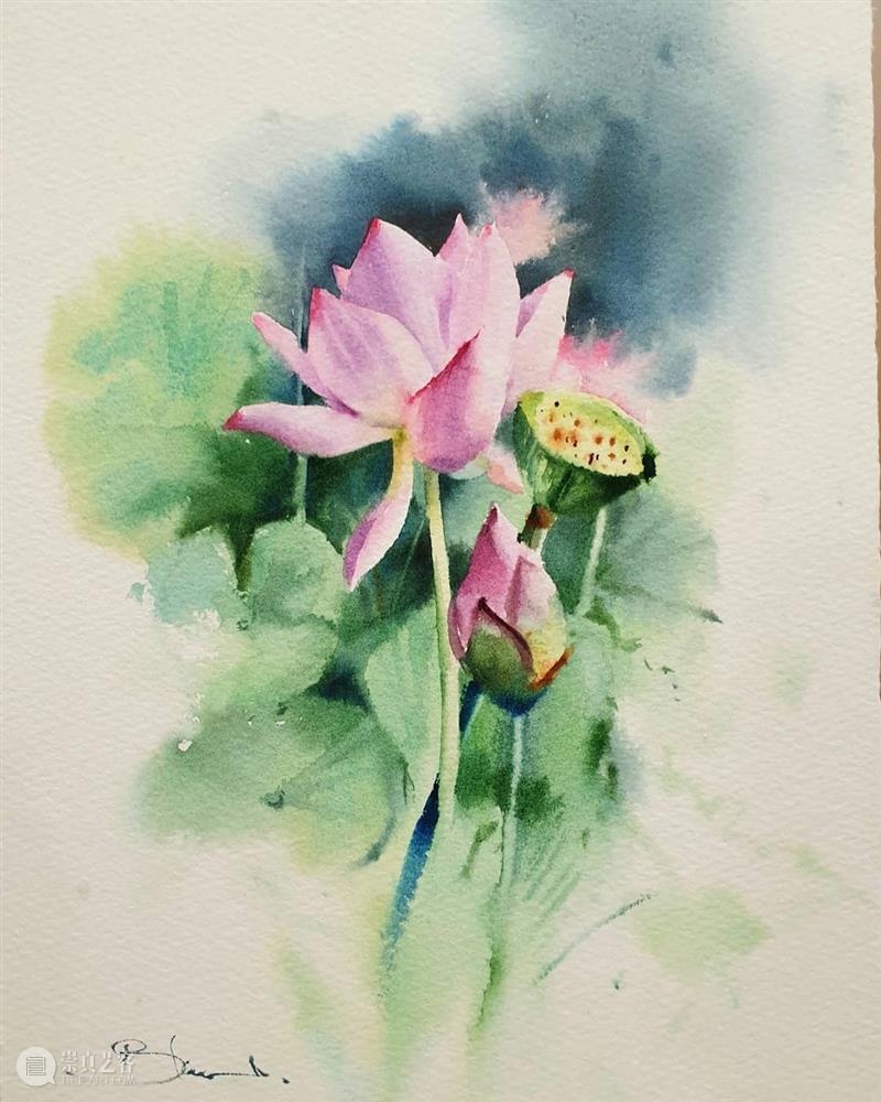 当水彩遇到花卉,简直不要太合适! 水彩 花卉 END 崇真艺客