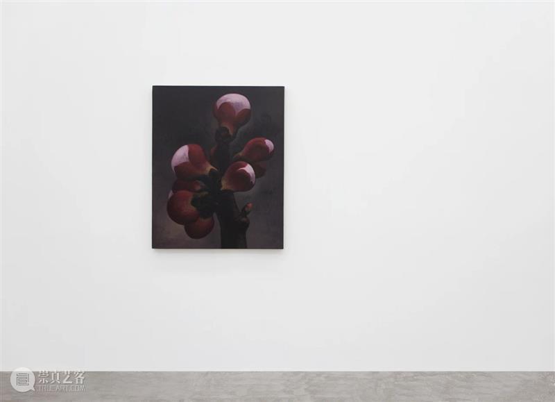 香格纳北京 | 展览《曲折的时间》10月16日开幕 时间 北京 香格纳 Winding Time 艺术家 Artists 韩锋 Liu 何伟 崇真艺客