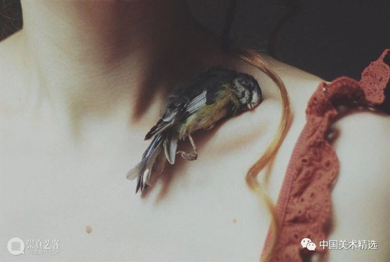 女孩与飞鸟 女孩 飞鸟 童话 巫术 报应 Laura bresku 波兰 视觉 艺术家 崇真艺客