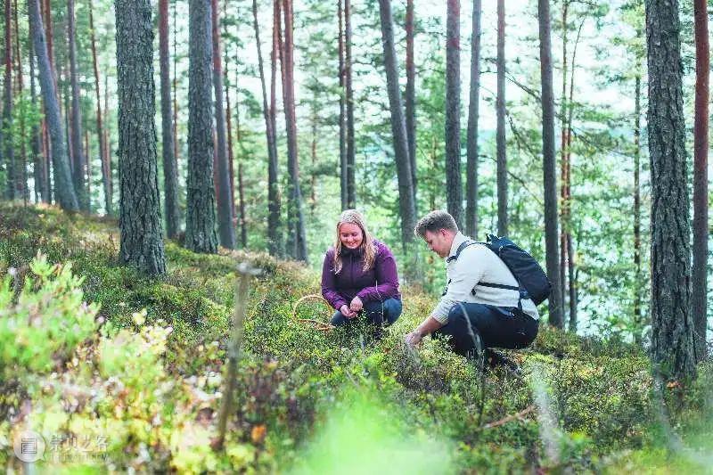【聆听芬兰】平衡与尊重——人与自然和谐共生的芬兰 人与自然 芬兰 中芬 系列 活动 嘉宾 倪雯 驻沪 总领事馆 国家商务促进局 崇真艺客