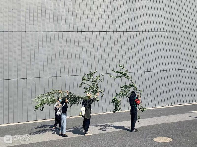 上双   《很久以前—PSA》项目参与者召集令 项目 很久以前—PSA 参与者 上海双年展 水体 参与性 艺术家 童文敏 作品 PSA 崇真艺客