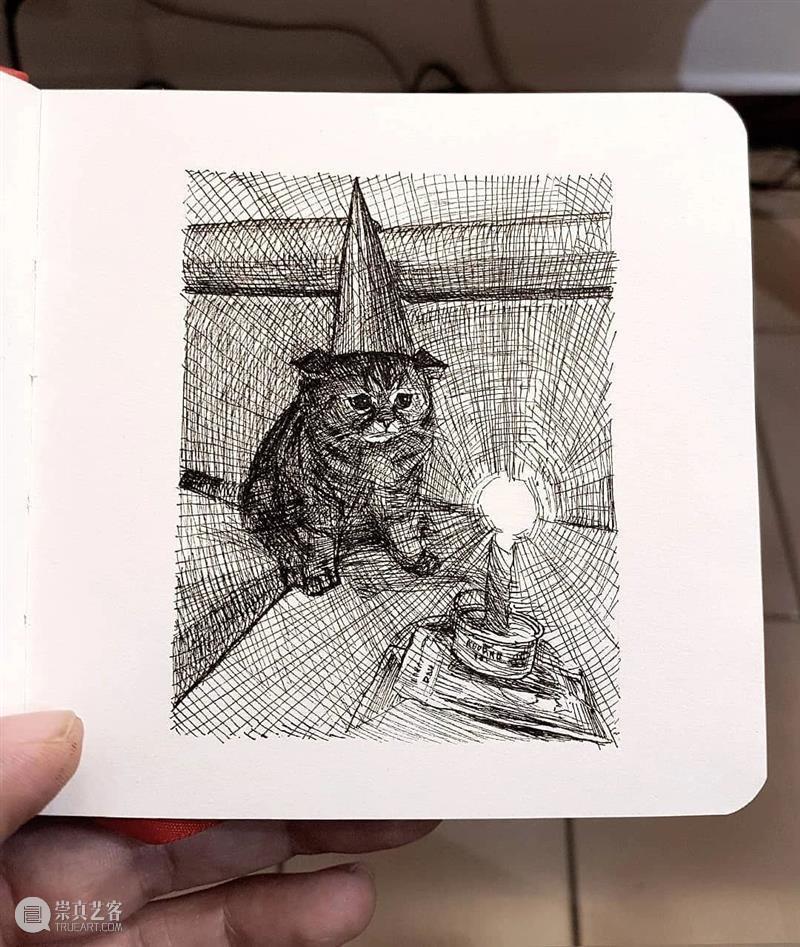 针管笔手绘 | 每一只猫猫都画得非常传神!—— Alberto Russo 针管笔 手绘 猫猫 Russo END 崇真艺客