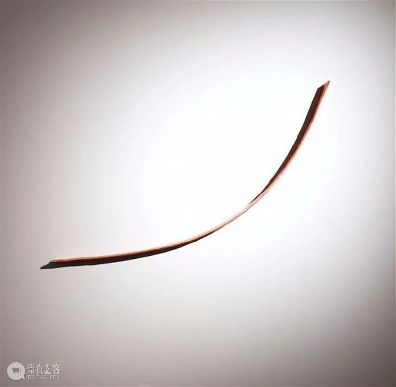 同行/我们的记忆由铜线和电路主宰 | 2020杜尚奖提名Alice Anderson Alice Anderson 铜线 记忆 同行 电路 杜尚奖 法裔 英国 艺术家 崇真艺客