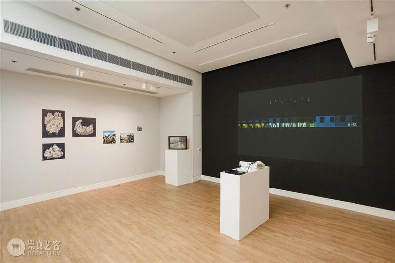 West Bund Art & Design 西岸艺术与设计博览会 狮語画廊 Leo Gallery展位 Booth:A222   崇真艺客