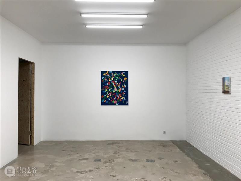 星空间 张晖『画什么都是一样的』展览回顾  星空间StarGallery 崇真艺客