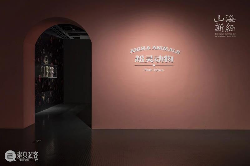 """""""山海新经""""之马克·莱登,快来看看这神秘的粉色盒子里,究竟住着哪些超萌小精灵~ 山海新经 马克 莱登 粉色 盒子 小精灵 中华 神话 元典 艺术展 崇真艺客"""