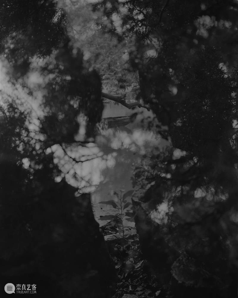 螺旋|周仰:不朽的林泉 林泉 周仰 螺旋 园林 一方 园中 外界 内外 时间 意义 崇真艺客