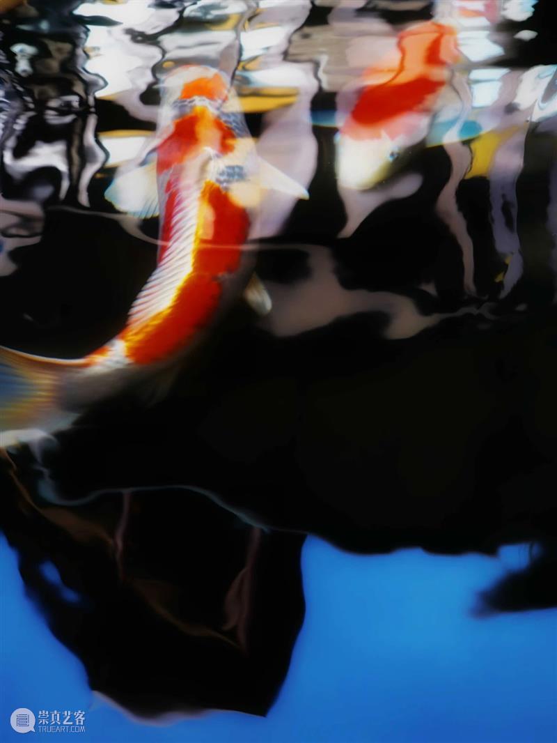 艾米李画廊 | 广州当代艺术博览会参展艺术家(一) 艺术家 艺术 艾米 李画廊 广州 博览会 孔宁 NING孔宁 边境城市 满洲里 崇真艺客
