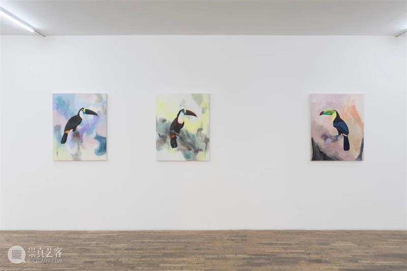 HdM 画廊预约观展公告 HdM 画廊 观展 目前 新型冠状病毒 肺炎 疫情 工作 总体 要求 崇真艺客