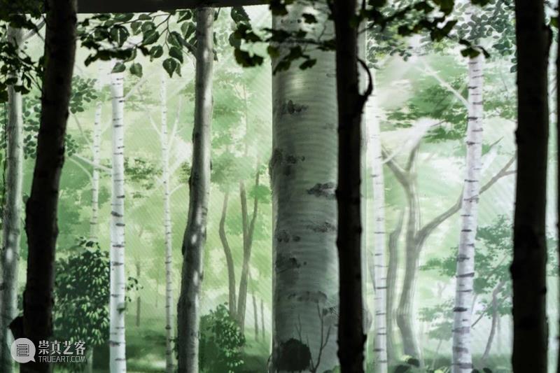 我们在城市里造了座森林! 城市 森林 心里 大自然 自然界 迷雾 正午 太阳 夜空 星月 崇真艺客