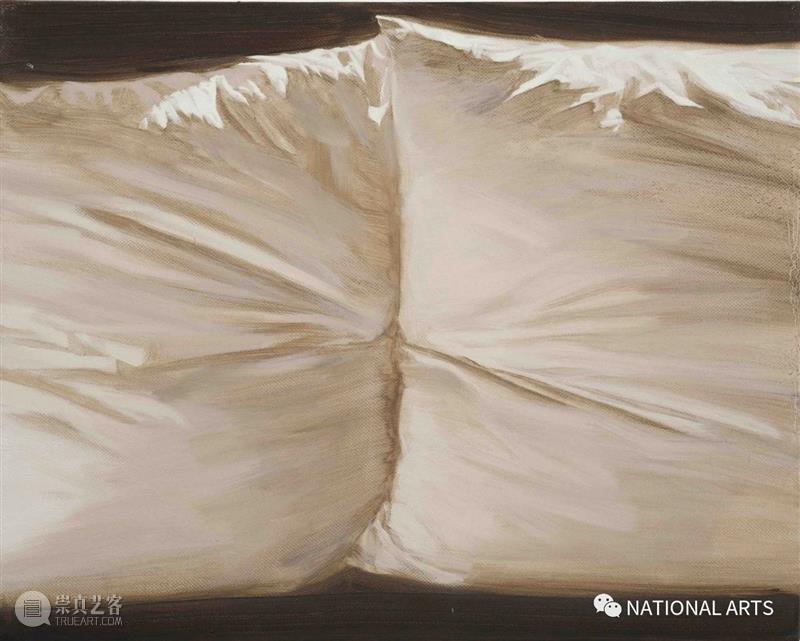 国家美术·专题丨鲁丹:生活中没什么是不可或缺的  NATIONAL ARTS 专题 生活 鲁丹 美术 国家 诗性 涂抹性 古书 赋彩 外师造化,中得心源 崇真艺客