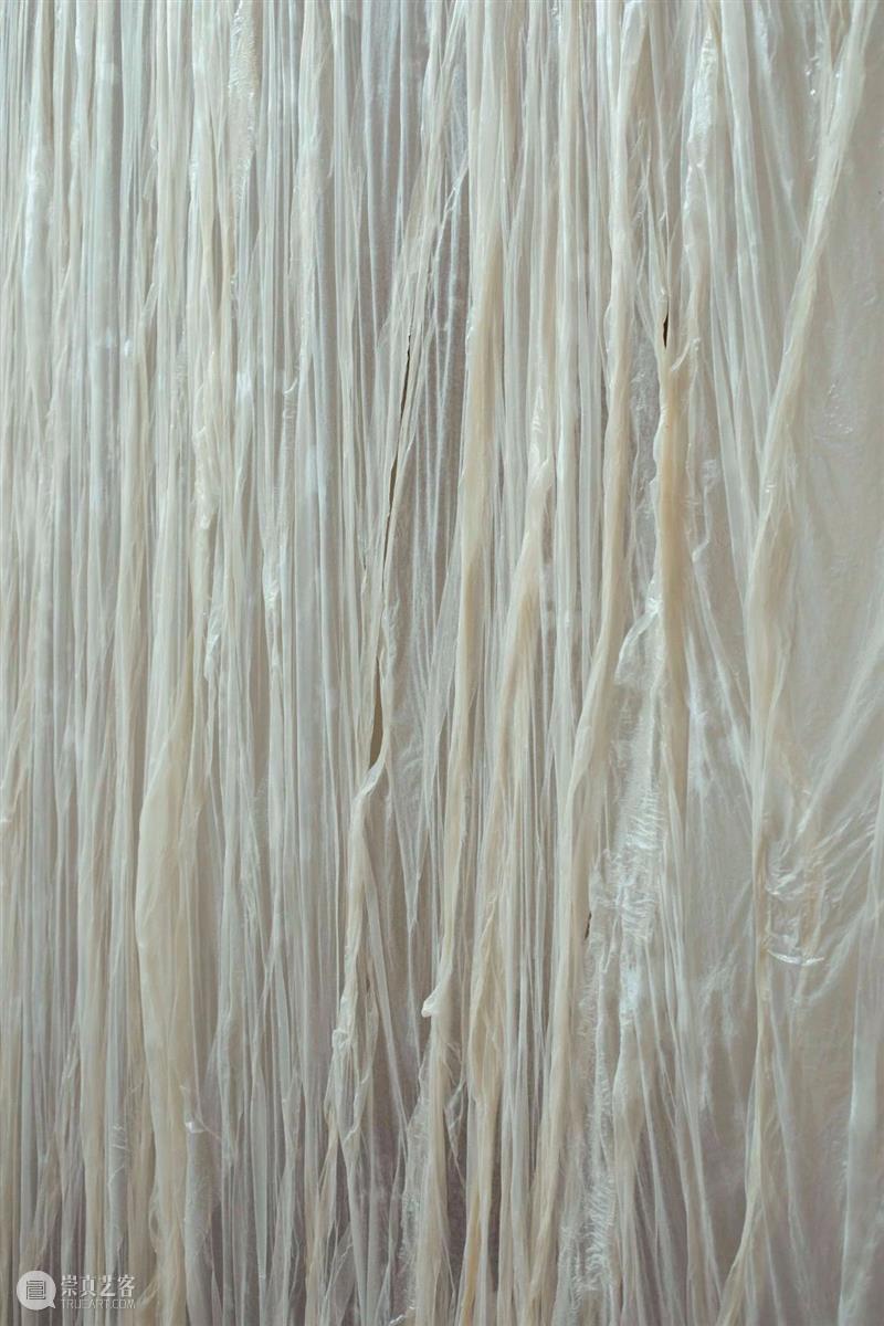 """同行/活体痉挛   2020""""未来世代奖""""入围Mire Lee Lee 活体 同行 未来 世代 韩国 艺术家 生活 工作 首尔 崇真艺客"""