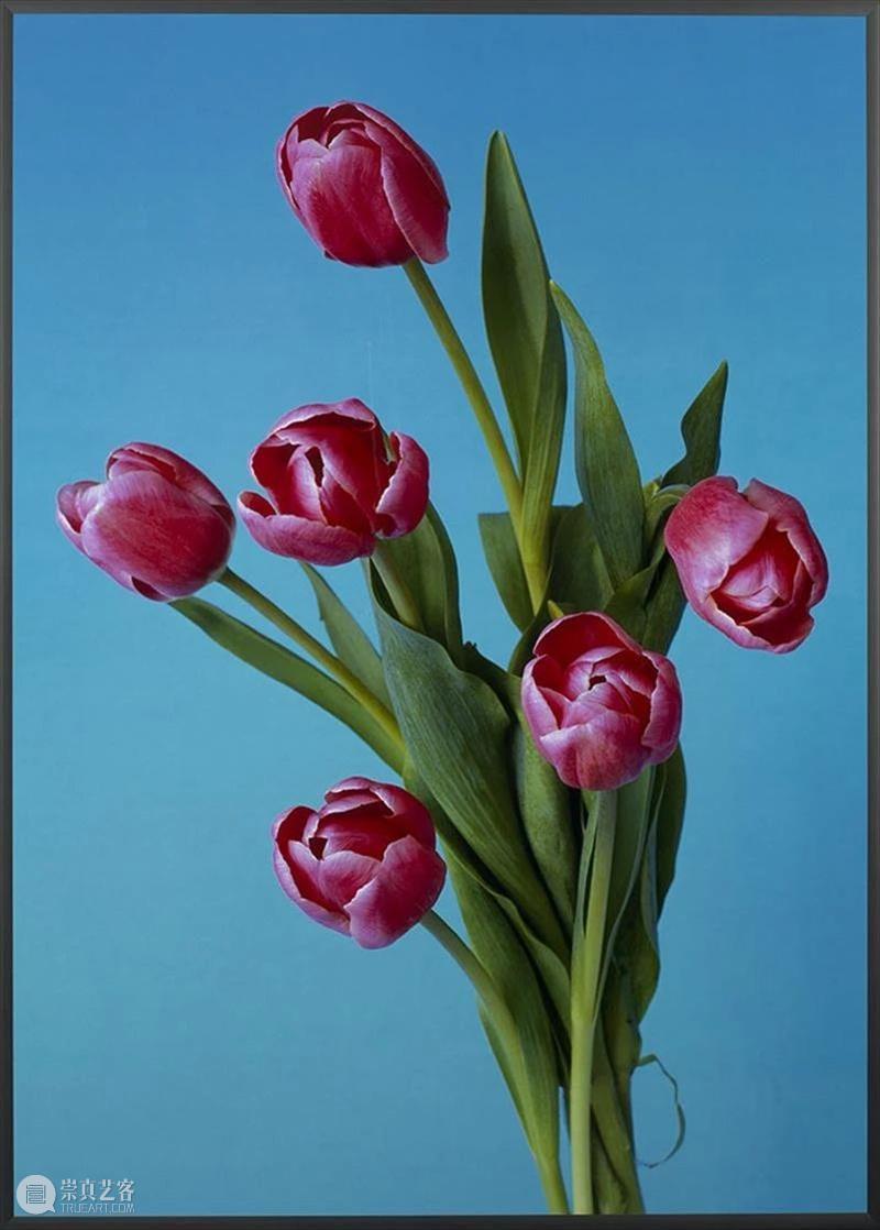 Simon Lee 画廊祝您每天都有10分钟的精彩。 Lee 画廊 Hans Peter Untitled Colour photograph 私人 情感 感染力 崇真艺客