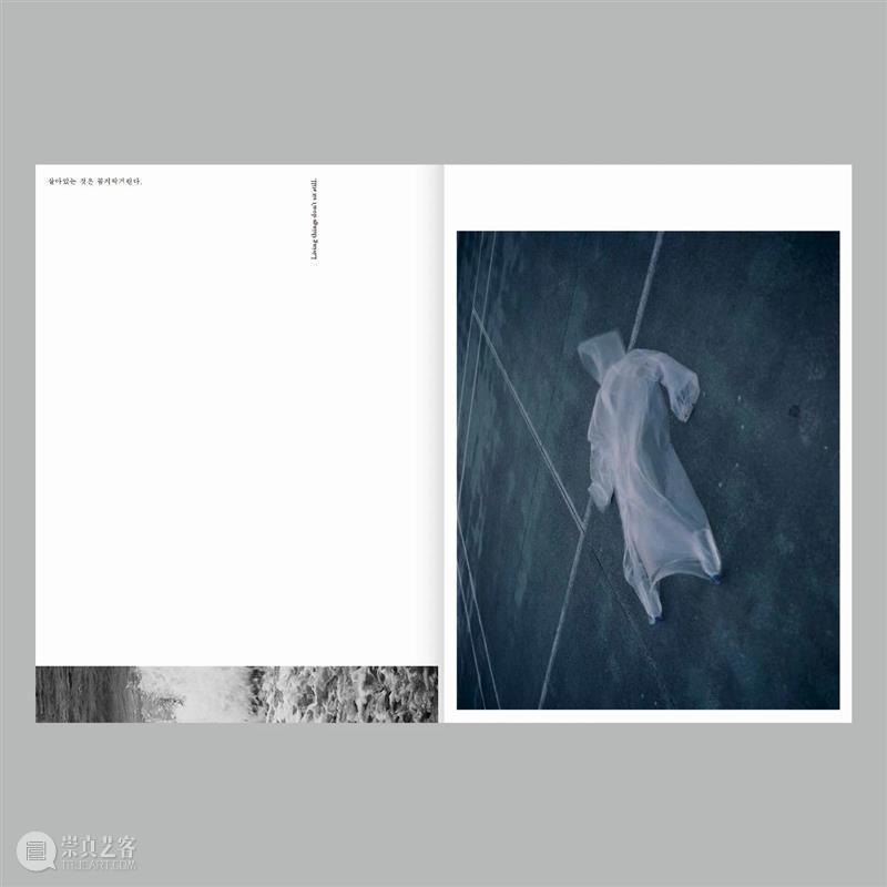 『对话:读·图·书』|Aprilsnow Press & Choi Yongjoon & Minji Yi 崇真艺客