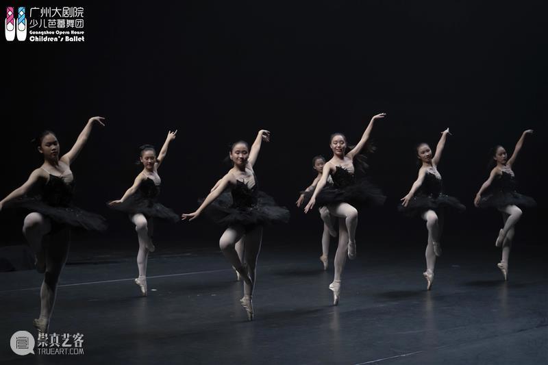 最后召集丨广州大剧院少儿芭蕾舞团2021春季第二轮增补团员招募 广州大剧院少儿芭蕾舞团 团员 舞剧 堂吉诃德 剧照 天鹅湖 广州大剧院 芭蕾 艺术 人才 崇真艺客