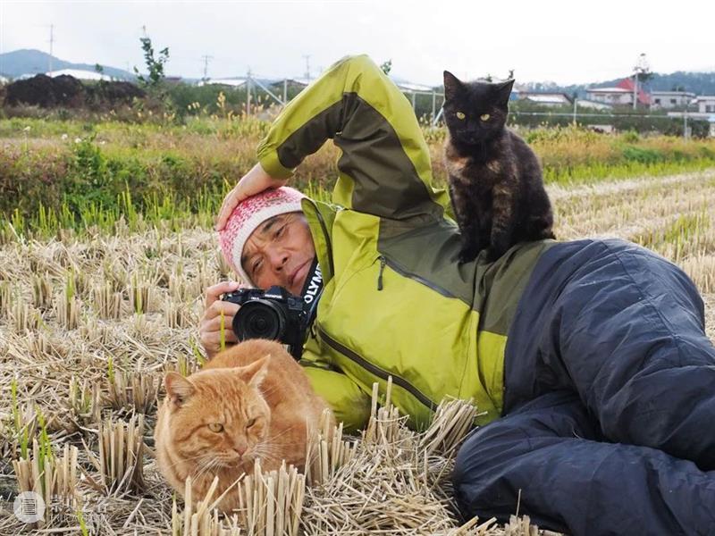 豆瓣9.4,顶级大师出手,这好片治愈了我节后第一天的丧 豆瓣 大师 节后 网上 人群 up主 平时 手机 猫咪 视频 崇真艺客