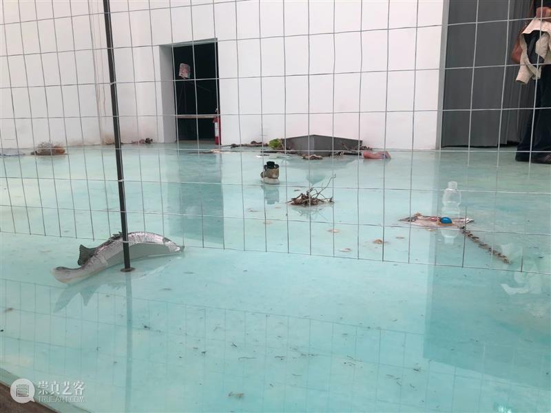下沉的岛屿  章鱼的隐喻  展览从后门开始......   Laure Prouvost 视频资讯 张营营 崇真艺客