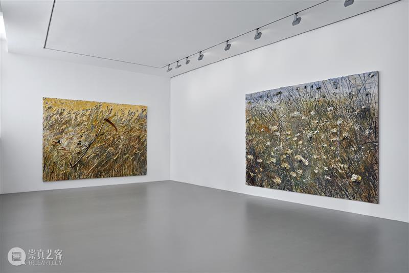 高古轩巴黎正在展出安塞姆·基弗个展「Field of the Cloth of Gold」 Gold 巴黎 安塞姆·基弗 个展 高古轩 Kiefer February Lannes高古轩 目前 当代 崇真艺客