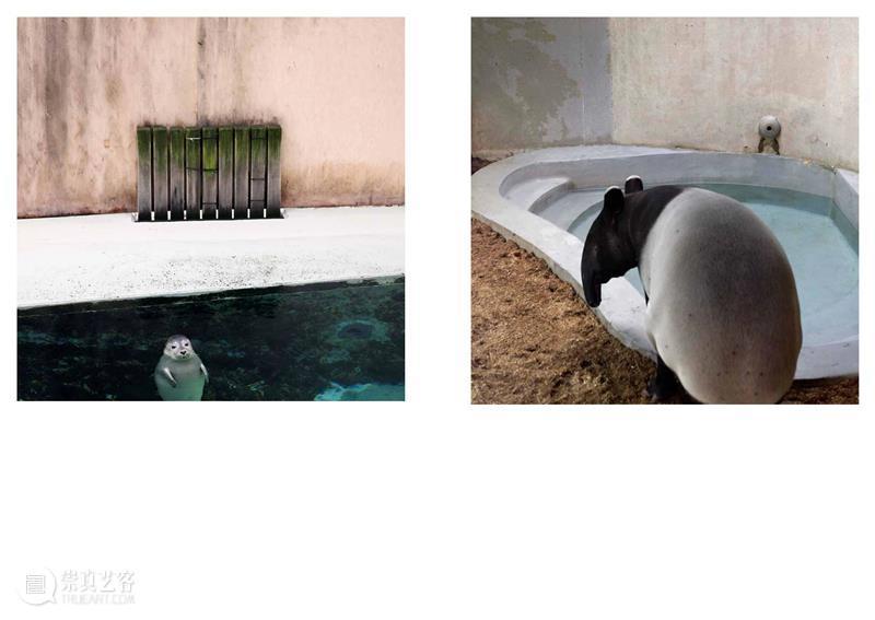 埃里克·裴欧 ERIC PILLOT:摄影比用文字描述有趣的多 Photography is much more fun 崇真艺客