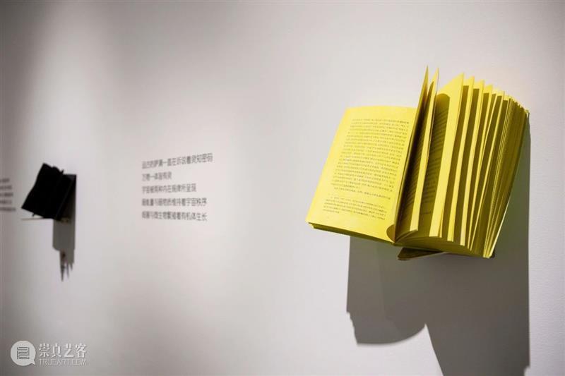 隔离 | 规则变成了表现形式 规则 表现形式 谈者 马阅 罗乐马 罗乐 王宁N 一段时间 方式 问题 崇真艺客