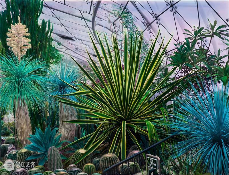 SCôP Conversation | 从社会文化到自然景态,史国威创作主题的转变 文化 史国威 主题 社会 自然景 大事件 国威 图片 艺术家 魔金石空间 崇真艺客