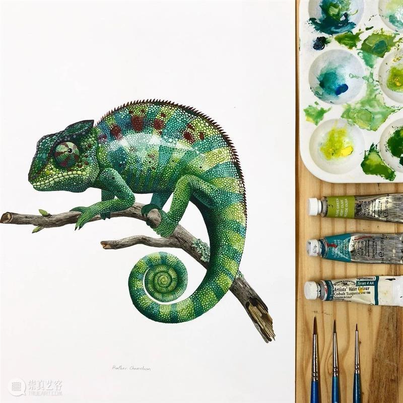 水彩里的动物世界,好神奇 !—— Georgina Taylor 作品 水彩 动物 世界 Georgina Taylor 作品 END 崇真艺客