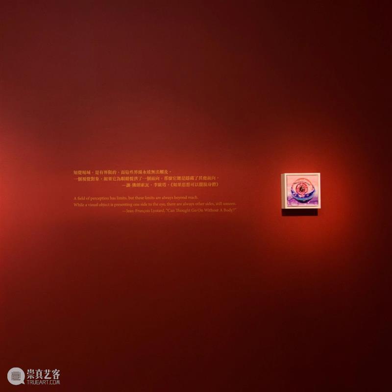 展覽現場|王亮尹—野獸的虹膜 王亮 尹—野獸 虹膜 展覽現場| Liang Yin Curator 王叡栩 Rui 展期 崇真艺客