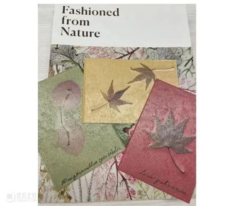 艺谈   回顾:从蕨类热到中国迷,时尚的轮回画了个圈 中国 蕨类 艺谈 图片 来源 时代 维多利亚 时期 女性 服饰 崇真艺客