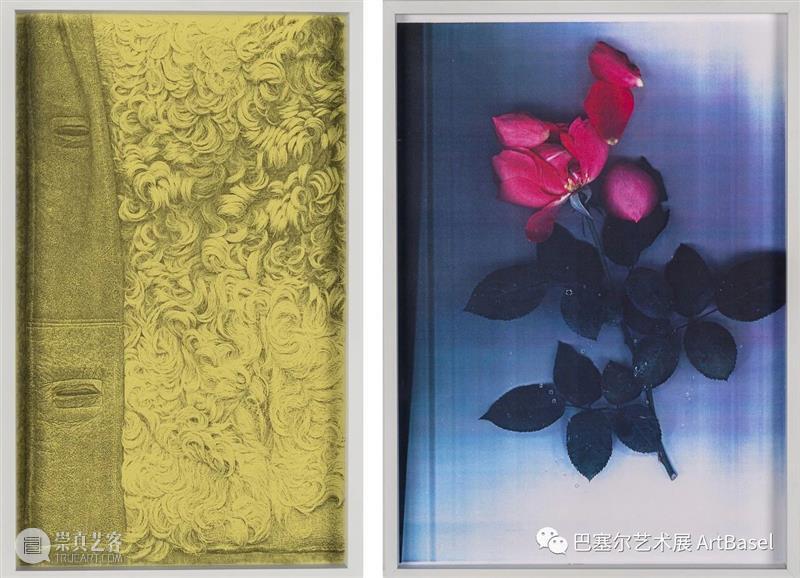 媒介的新颖奇想如何在植物、复印机、白布和米纸中实现? 博文精选 巴塞尔艺术展 复印机 植物 媒介 白布 奇想 OVR 艺术 先锋 作品 现实 崇真艺客