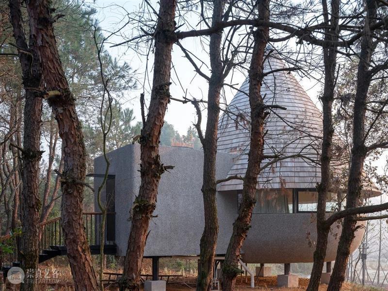 蘑菇木屋 / 休耕建筑 视频资讯 ADCNews 建筑 蘑菇 木屋 松树林 自然 关系 重点 形式 功能 体量 崇真艺客