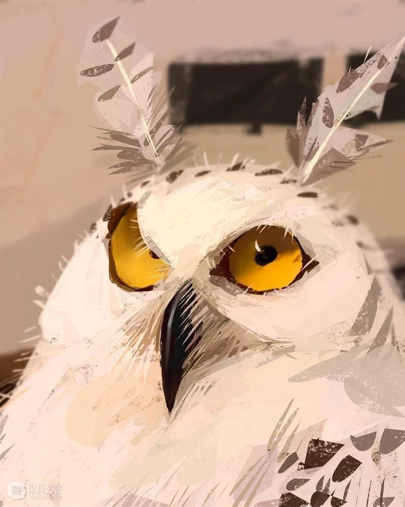 这像极了我自拍的样子 样子 动物 自拍照 @albeniz rodriguez 笔下 作品 头像 往期 白色 崇真艺客