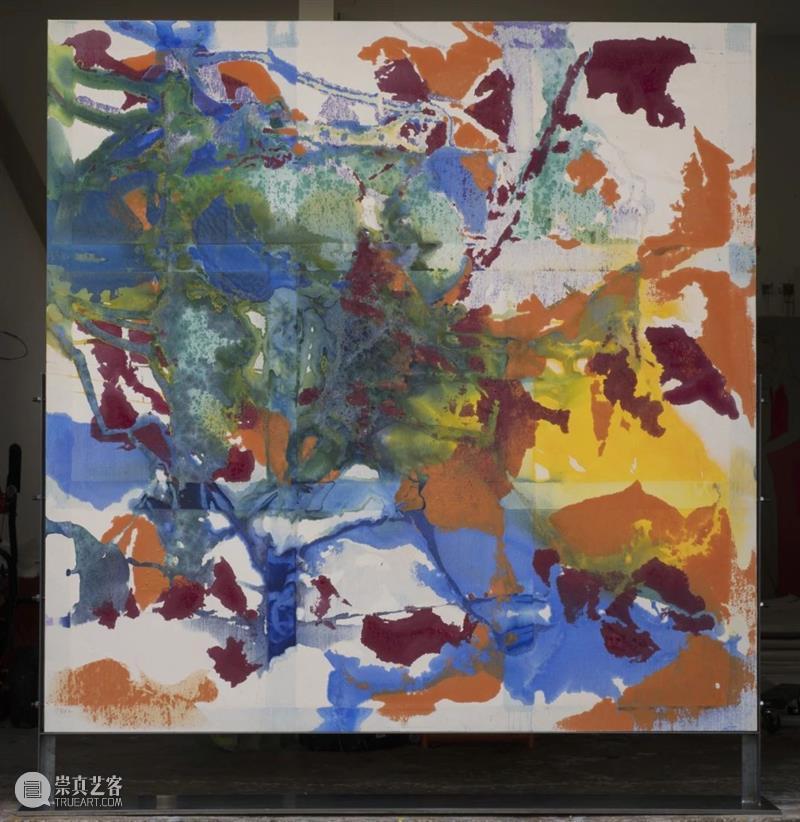 同行/双面的嬉戏与冒险 | Dona Nelson Nelson 双面 Dona 同行 美国 画家 生涯 非正统 材料 工艺 崇真艺客