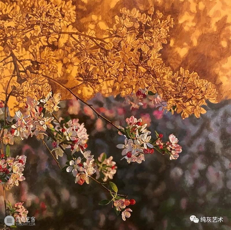 自然光下的写实花卉 自然光 花卉 美国 画家 Jeffrey Vaughn 风景 工作 作品 自然世界 崇真艺客