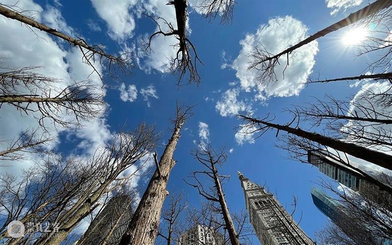 世界地球日:八位积极倡议可持续发展的著名艺术家  佳士得 艺术家 世界地球日 倡议 瑞典 女孩 格蕾 Thunberg 世代 环保 领袖 崇真艺客